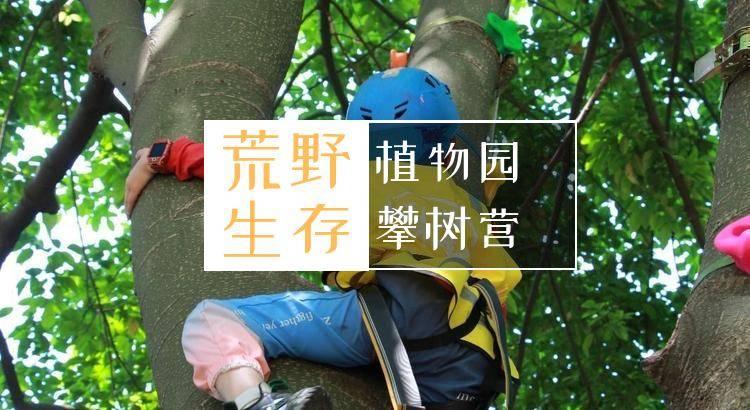 植物园攀树半日营,新营上线